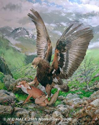Eagle with fox - Watercolour/Gouache with Conte painting by artist Kenneth Padley