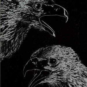 Golden Eagle heads on black background